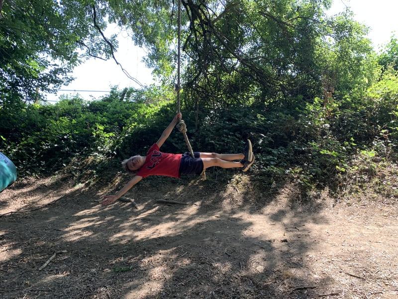 tree climbing park