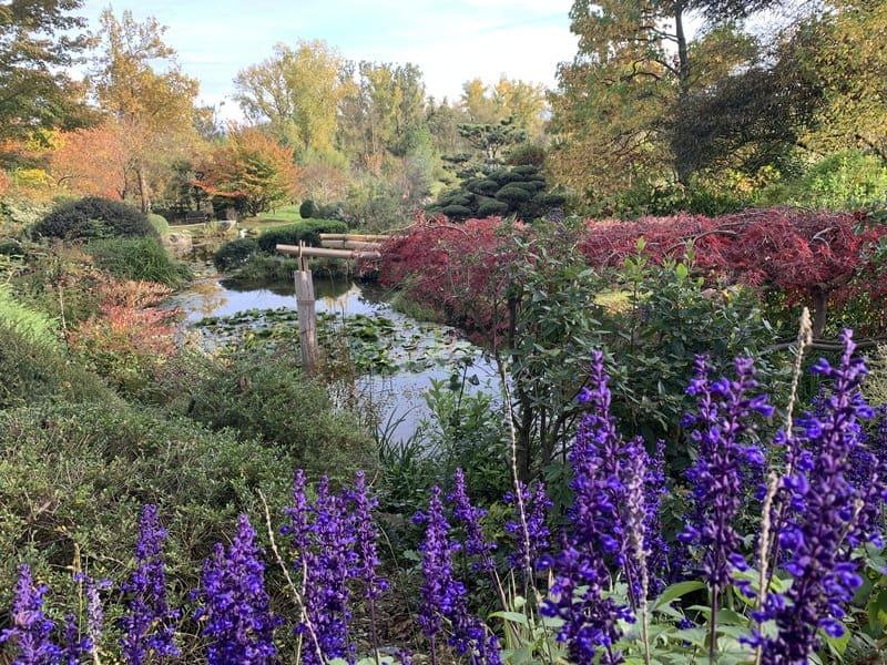 Jardin Zen d'Eric Borja